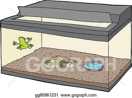 Vector art frog in. Aquarium clipart turtle