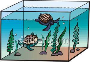 Pet clipart pet turtle. Aquarium pencil and in