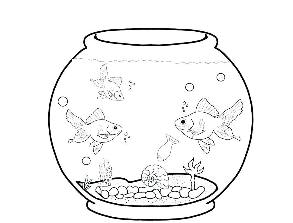 Aquarium clipart turtle tank. Fish x free clip