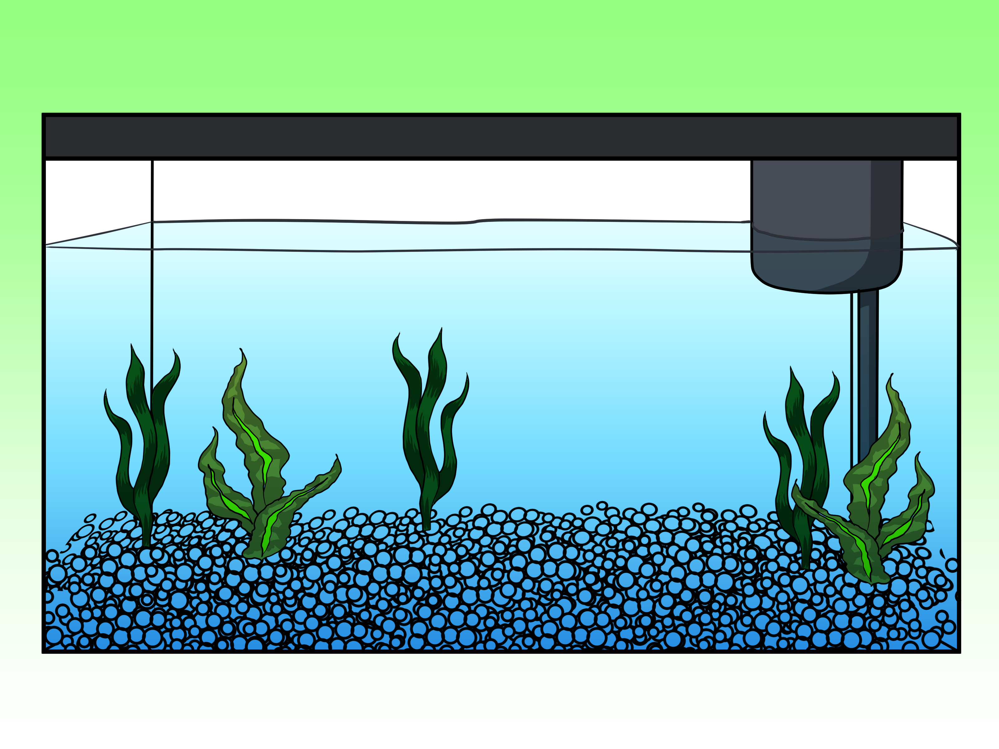 collection of drawing. Aquarium clipart turtle tank