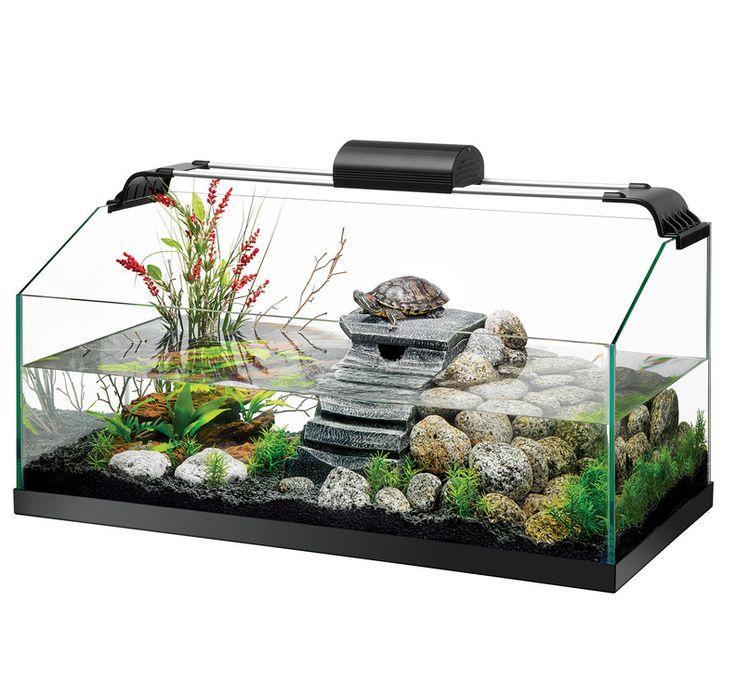 Aquarium clipart turtle tank.  best images on