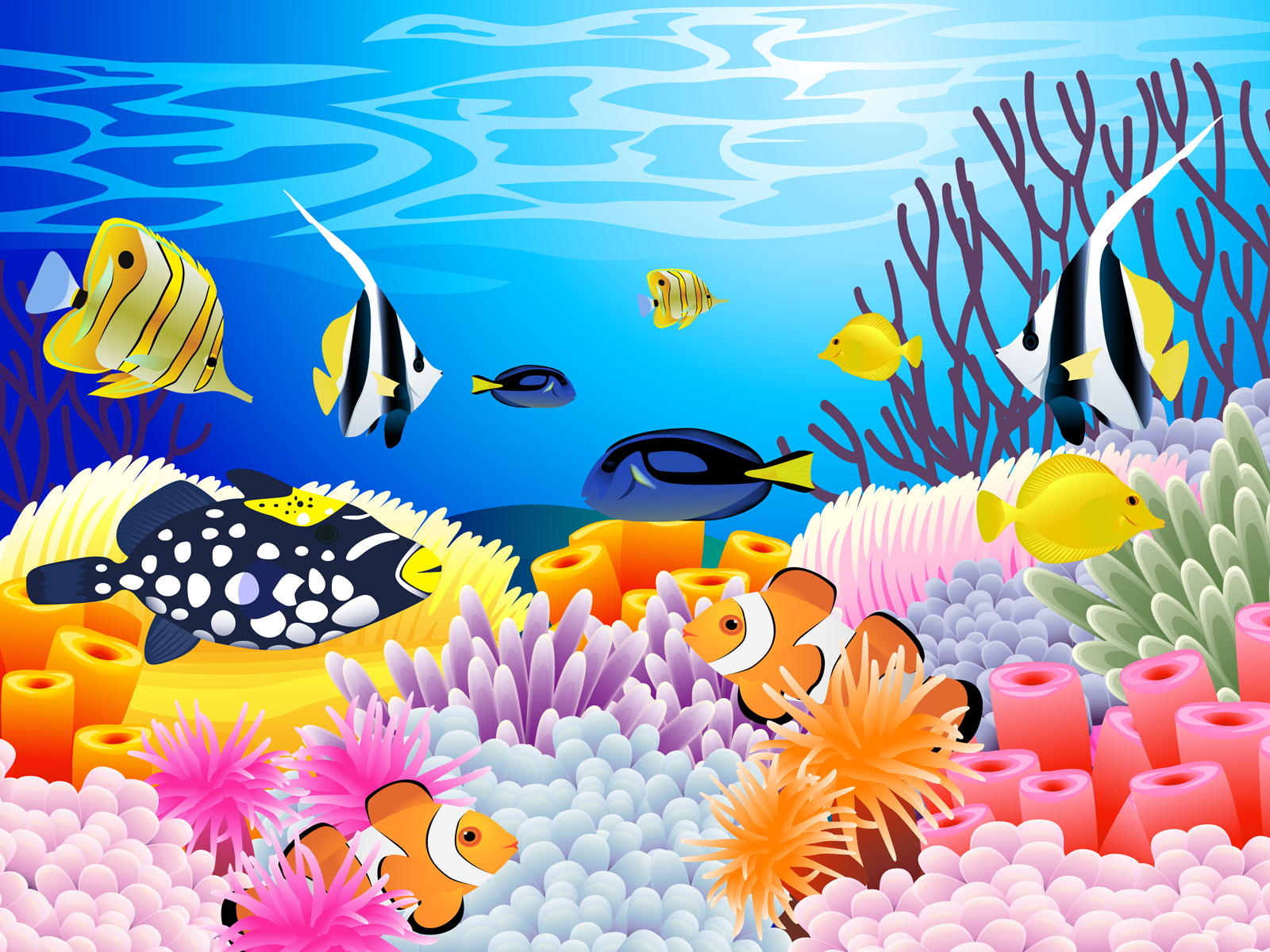 Undersea picture of colorful. Clipart ocean underwater