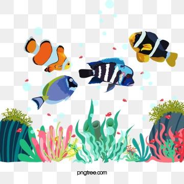 Fish png images and. Aquarium clipart vector