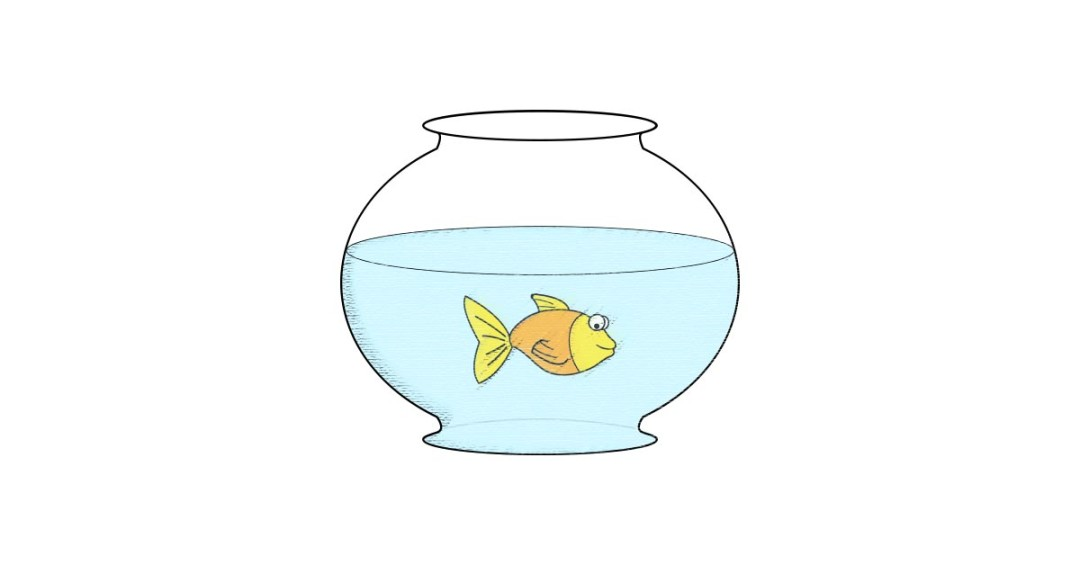 And png free download. Aquarium clipart vector