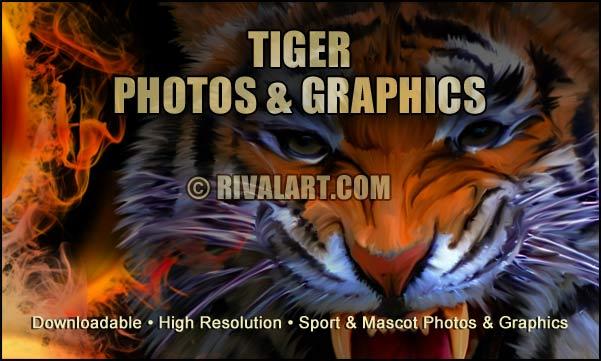Graphics on rivalart com. Archery clipart tiger