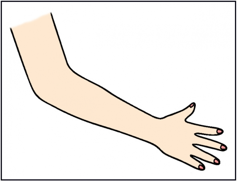 Arm clipart arm outline. Arms group clip art