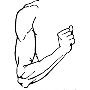 Arms clipart black and white. Arm station
