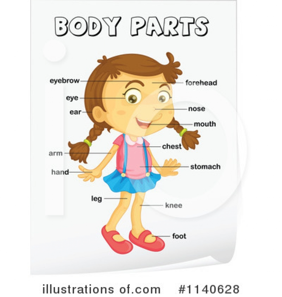 Human parts for kids. Arm clipart body part