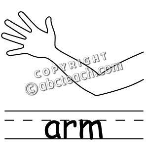 Arms clipart body part. Clip art parts of
