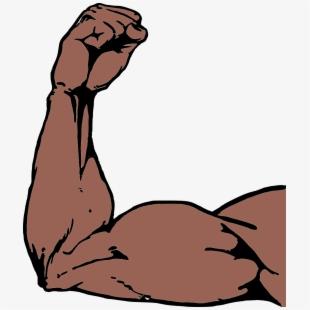 Arms clip art muscle. Arm clipart buff