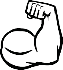 Image result for muscle. Arms clipart clip art