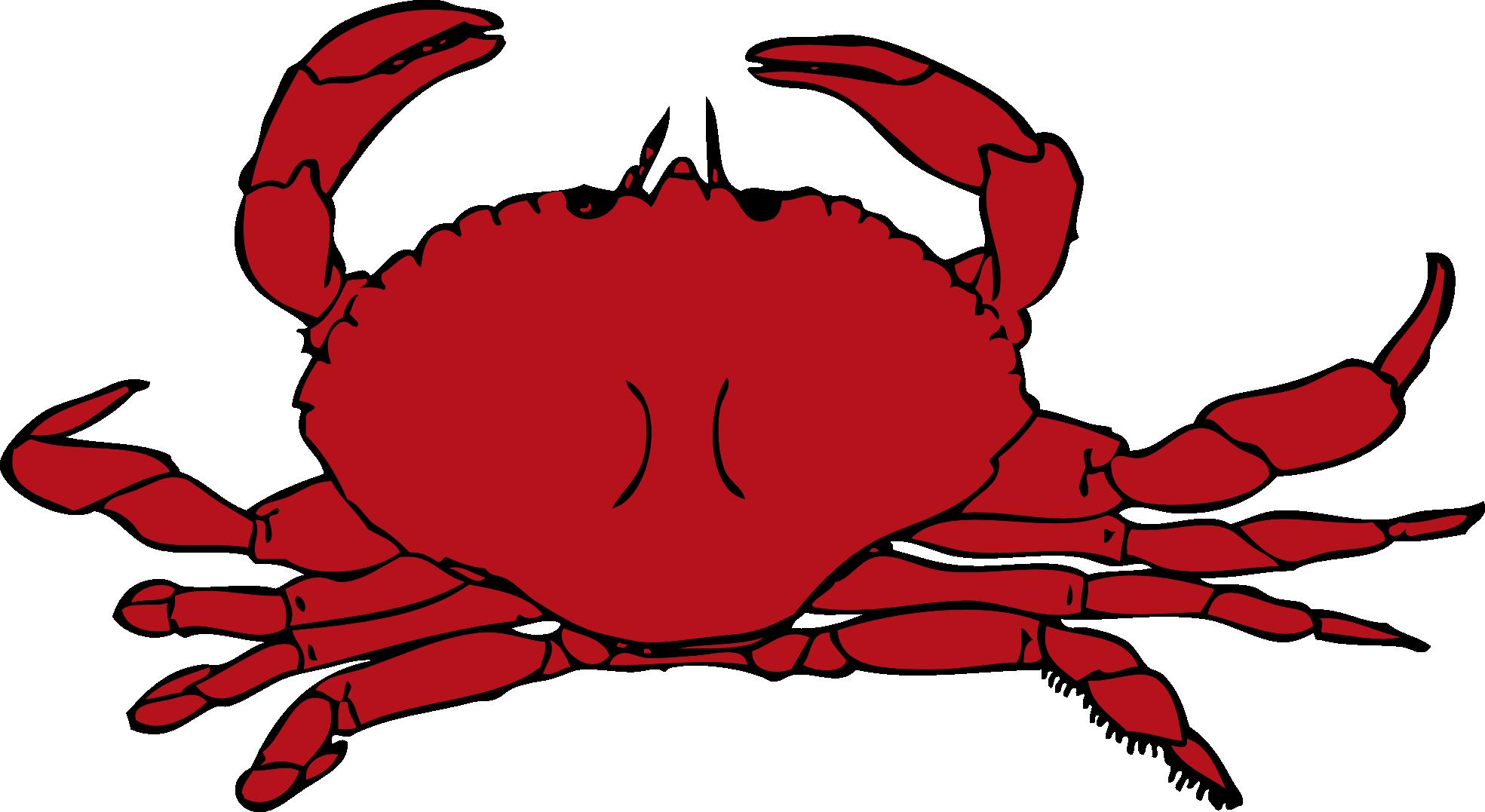 Crab clip art cartoon. Crabs clipart starfish