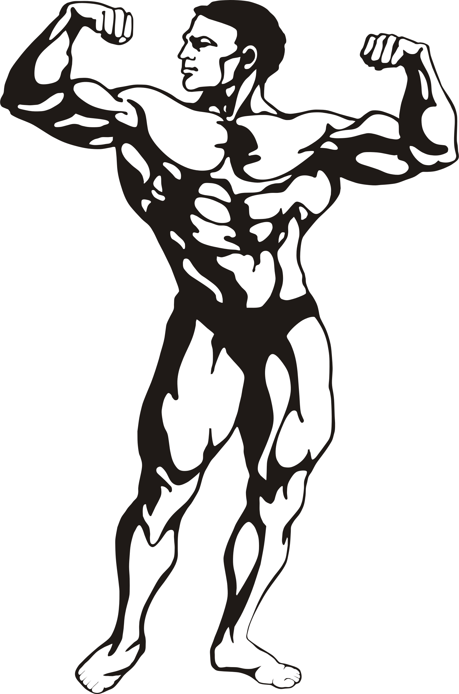 Fitness big image png. Clipart man muscle