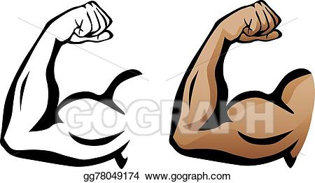 Vector illustration muscular arm. Muscles clipart muscle biceps