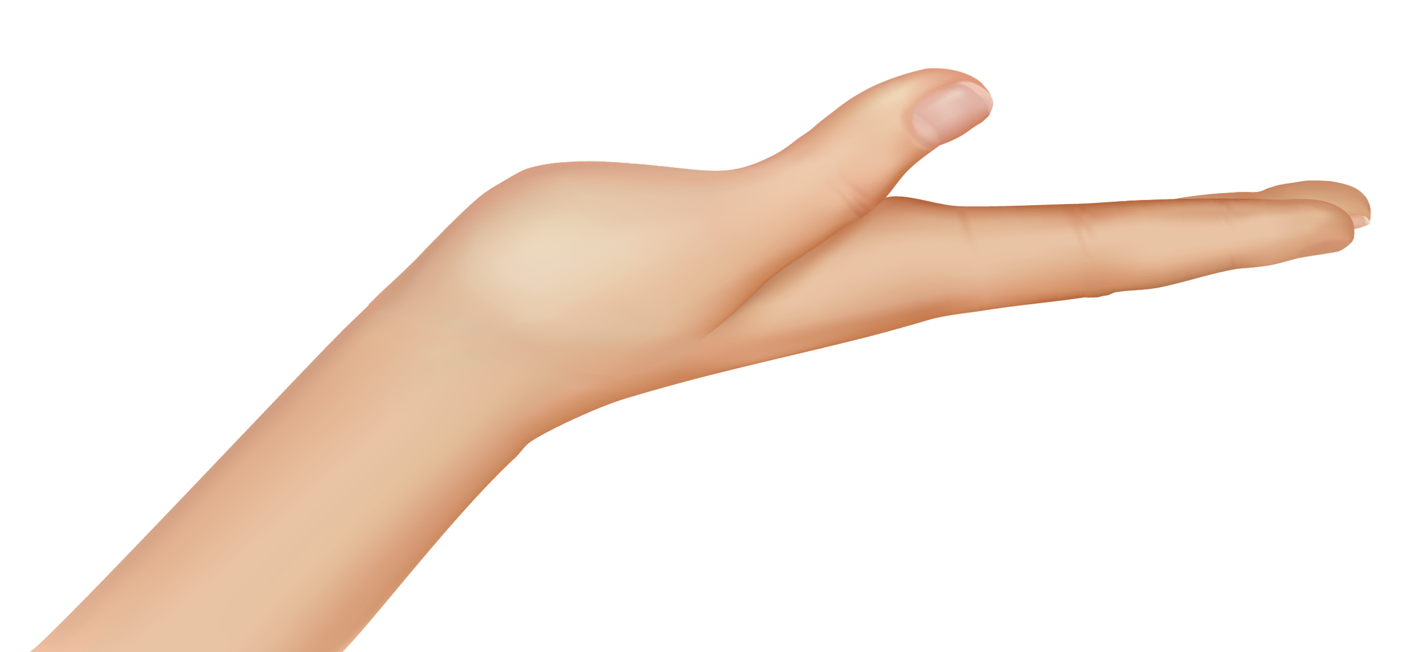 Hand png image gallery. Lady clipart hands