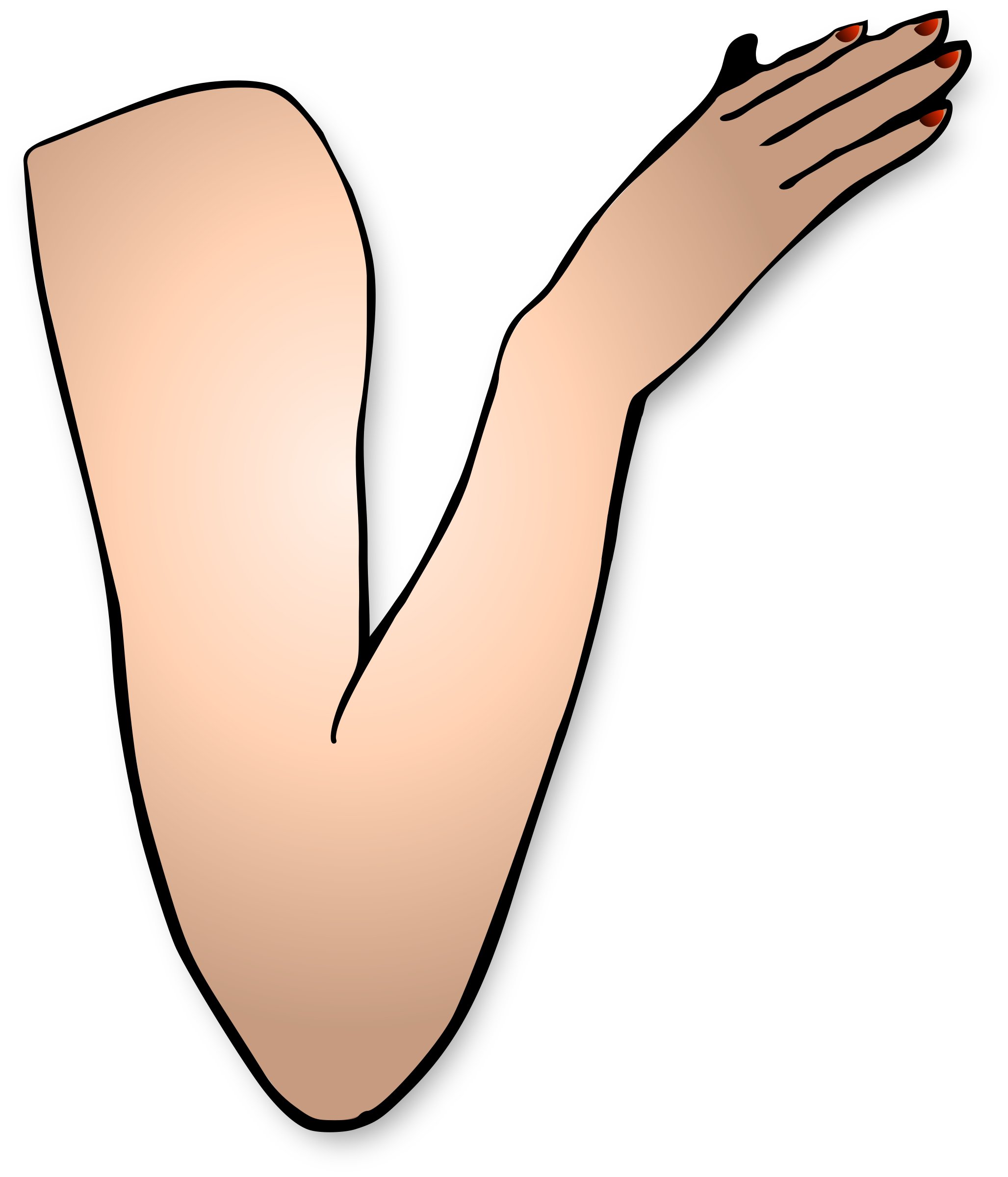 Png image mart. Hand clipart arm
