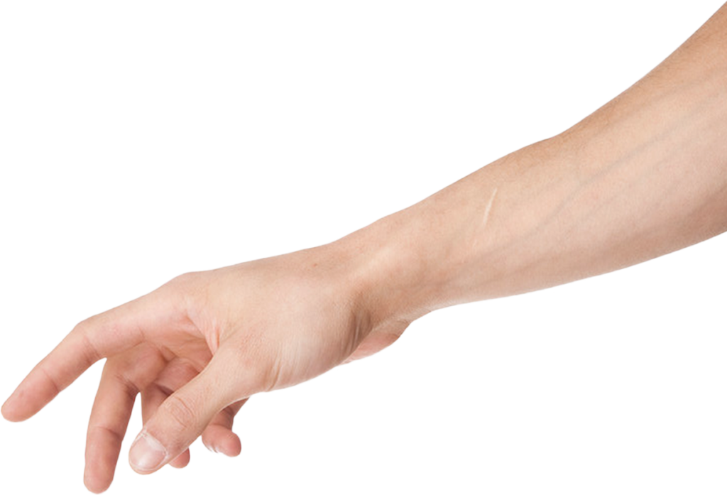 Png peoplepng com download. Clipart hand arm