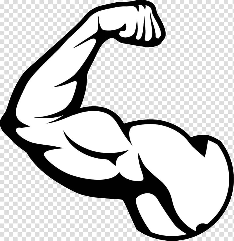 Biceps illustration arm muscle. Hands clipart muscular