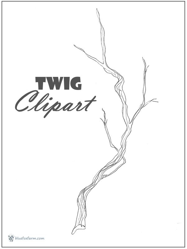 Arm clipart twig. Hand drawn dividers to