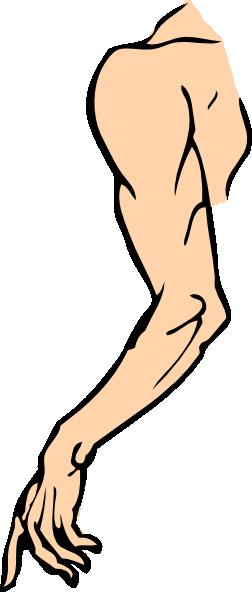 Clip art at clker. Arm clipart vector