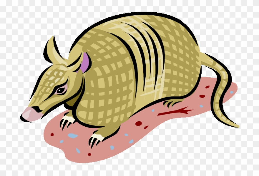 Banded png . Armadillo clipart