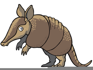 Cartoon free images at. Armadillo clipart