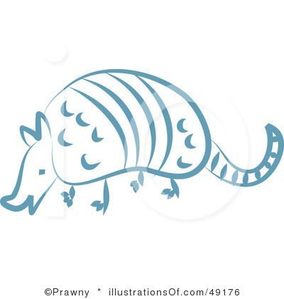 Armadillo clipart baby.  best armadillos images