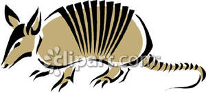 Armadillo clipart colorful. A beige royalty free