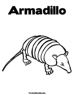 Cartoon pictures best school. Armadillo clipart coloring page