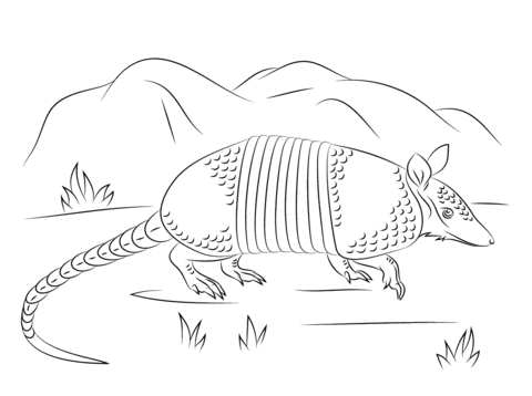 Armadillo clipart coloring page. Nine banded walks free