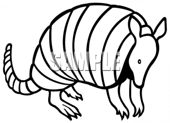 Armadillo clipart cool. Of a outline animalclipart