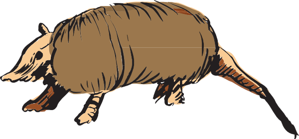 Armadillo clipart cool. Clip art at clker