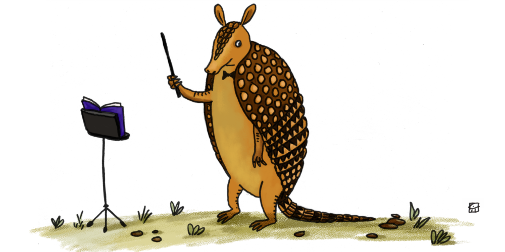 Encore s song circle. Armadillo clipart simple