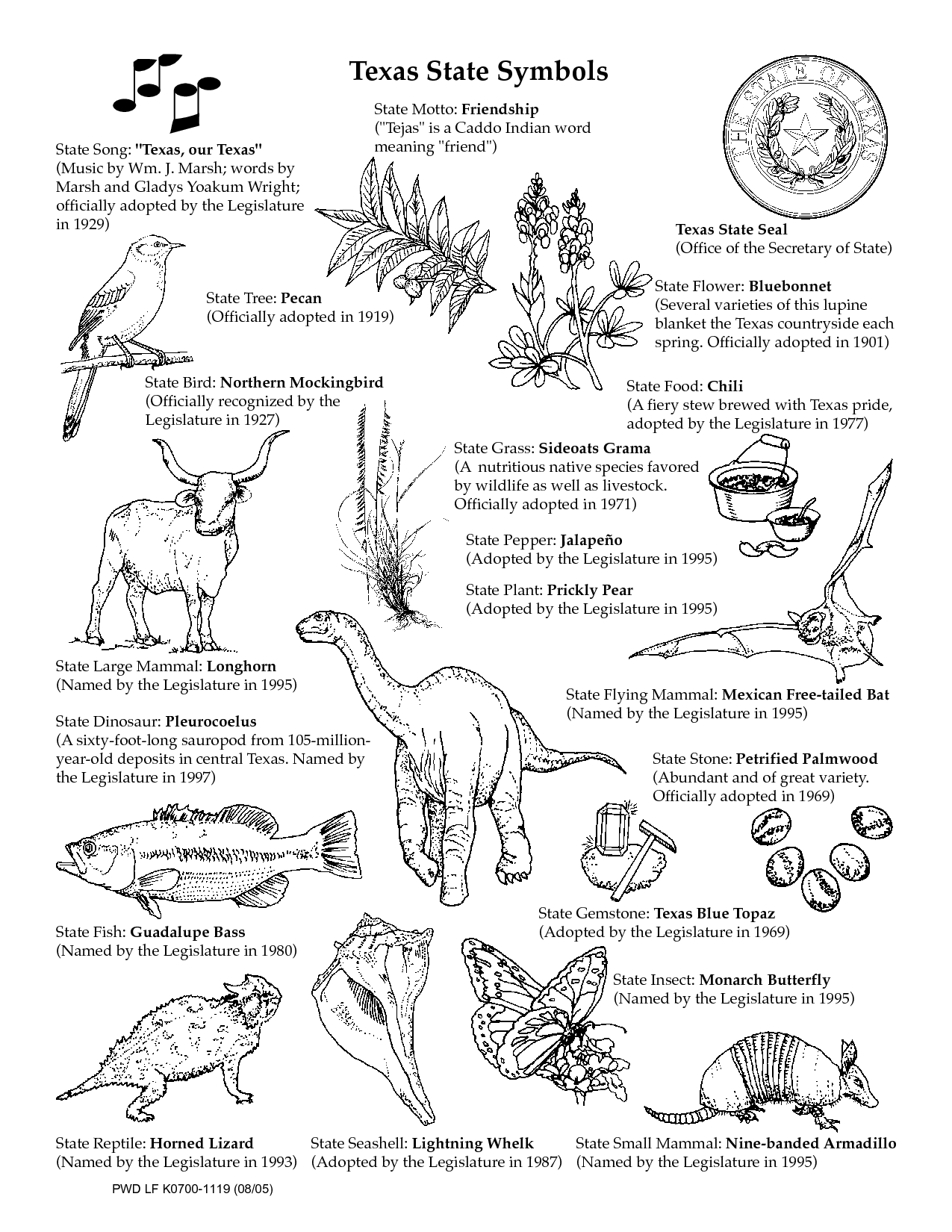 Symbols worksheets coloring pages. Armadillo clipart state symbol texas