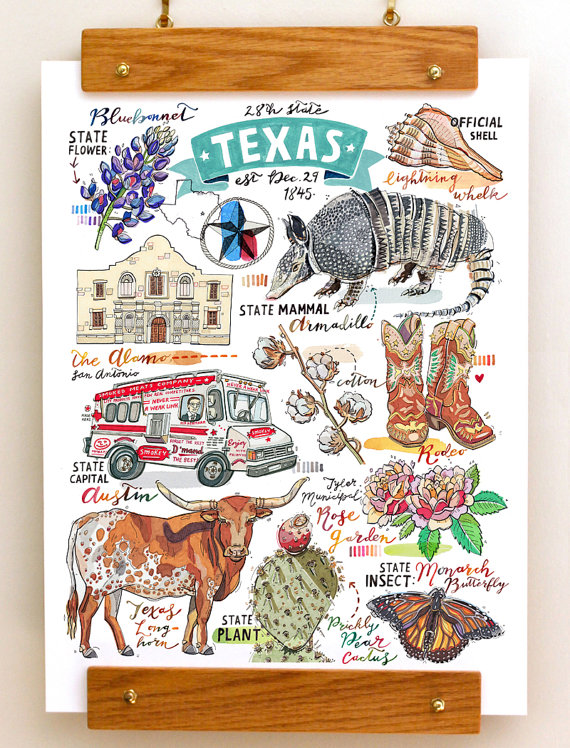 Print illustration symbols the. Armadillo clipart state symbol texas
