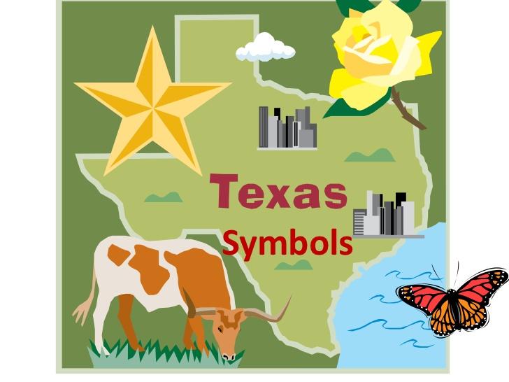 Symbols . Armadillo clipart state symbol texas