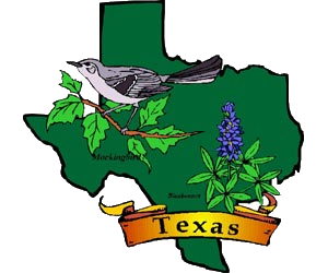 Armadillo clipart state symbol texas. A to z kids
