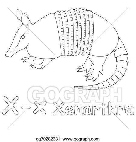 Armadillo clipart xenarthra. Stock illustration x for