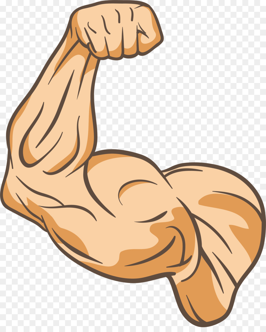 Arms clipart arm leg. Muscle physical fitness thumb