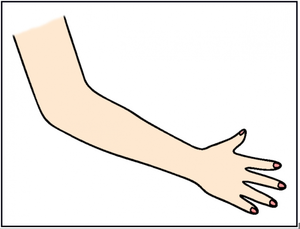 Arms free images at. Thumb clipart arm
