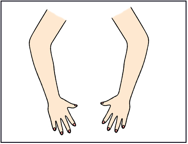 Arms clipart body part. Parts of the flashcards