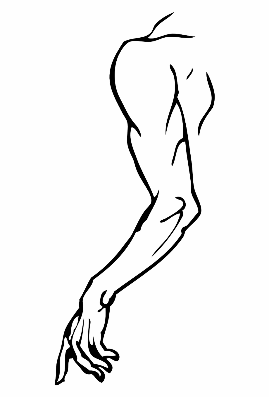 Arm left hand human. Elbow clipart body part