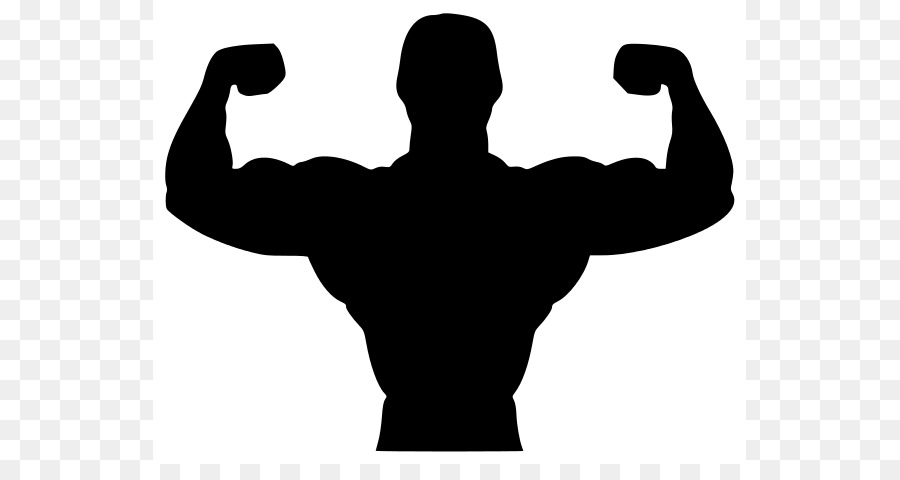 Gym clipart. Arm silhouette at getdrawings