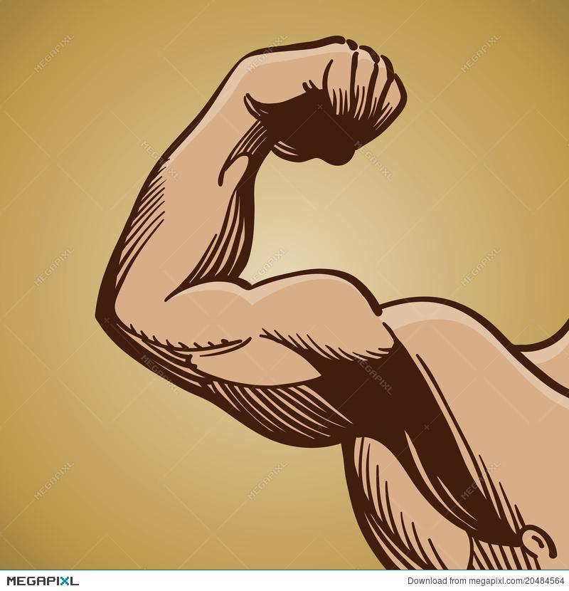 Arms clipart flexed arm. Man flexing muscle illustration