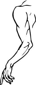 Arms clipart left arm. Clip art at clker