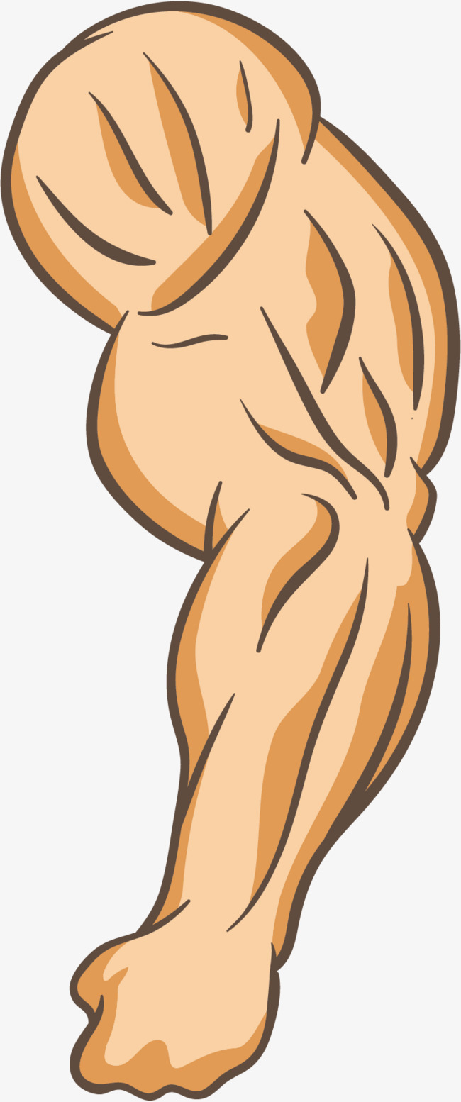 Arms clipart left arm. Strong powerful png and