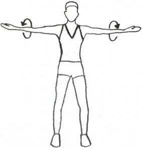 Arms clipart shoulder. Exercise how to perform