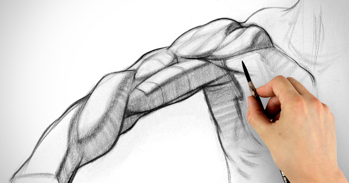 Drawing at getdrawings com. Arms clipart shoulder