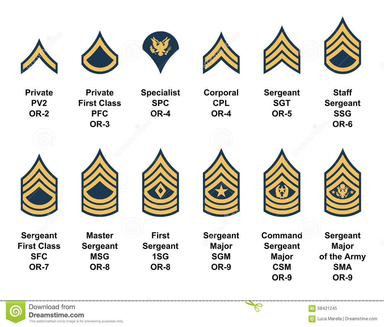 Enlisted rank insignia panda. Army clipart patches
