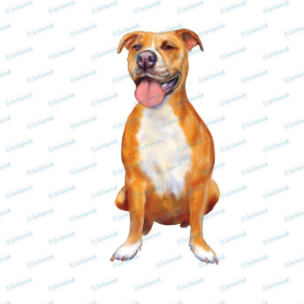 Pitbull instant download digital. Artist clipart dog